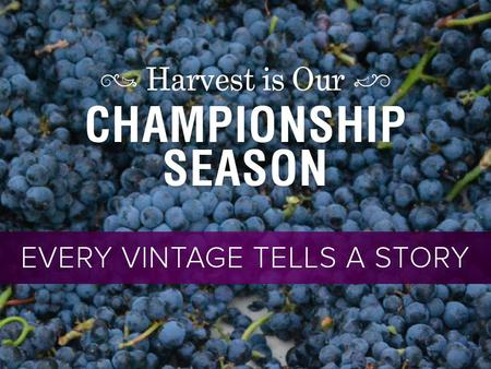 Top Red Varieties Cabernet Sauvignon Merlot Pinot Noir Zinfandel Cabernet Franc Top White Varieties Chardonnay Sauvignon Blanc The Diversity of Napa Valley.