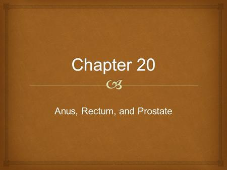 Anus, Rectum, and Prostate..   Examination of the anus and rectum is performed:  As part of an annual well-person examination for both men and women.
