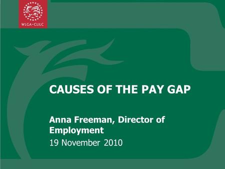 CAUSES OF THE PAY GAP Anna Freeman, Director of Employment 19 November 2010.