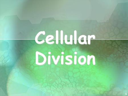 1 Cellular Division. 2 I. Cell Division All cells are derived from pre- existing cells All cells are derived from pre- existing cells New cells are produced.
