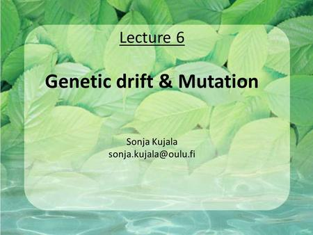 Lecture 6 Genetic drift & Mutation Sonja Kujala