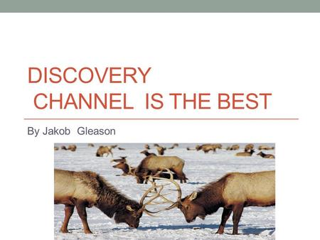 DISCOVERY CHANNEL IS THE BEST By Jakob Gleason. I think that Discovery Channel is the best channel on TV. First, I like Gold Rush. Second, I really enjoy.