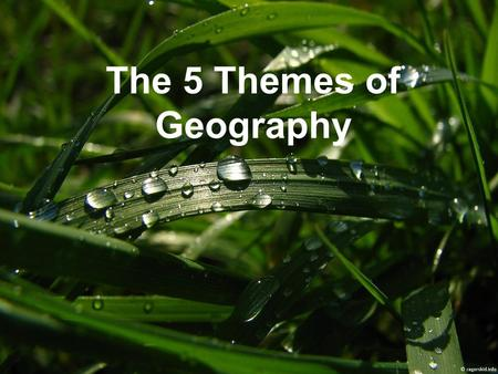 The 5 Themes of Geography. What is Geography? Physical Geography: The study of earth and its landforms. Cultural Geography: The study of people, their.