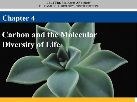LECTURE Mr. Karns AP biology For CAMPBELL BIOLOGY, NINTH EDITION. Carbon and the Molecular Diversity of Life Chapter 4.