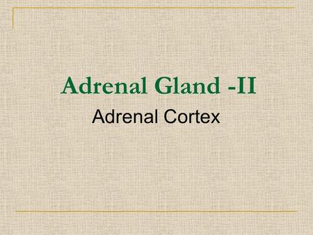 Adrenal Cortex Adrenal Gland -II. At the end of the lecture, students should be able to: Describe the mechanisms of action of glucocorticoid and aldosterone.