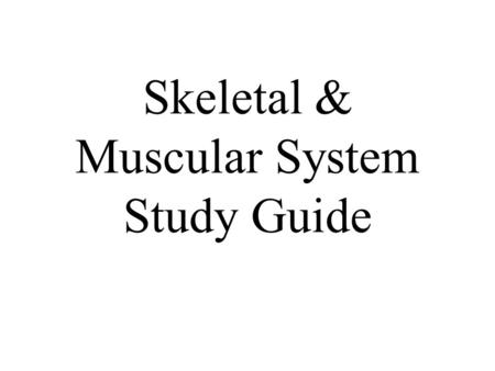 Skeletal & Muscular System Study Guide 1. What is the highest level of organization in the body? Organism.