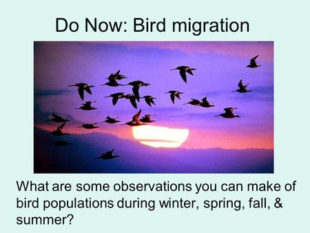 Do Now: Bird migration What are some observations you can make of bird populations during winter, spring, fall, & summer?