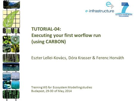 TUTORIAL-04: Executing your first worflow run (using CARBON) Eszter Lellei-Kovács, Dóra Krasser & Ferenc Horváth Training WS for Ecosystem Modelling studies.