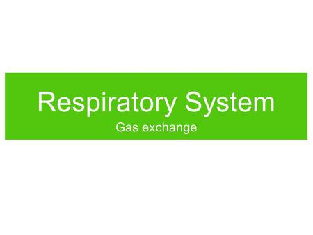 Respiratory System Gas exchange. Why do we breathe? Think of all the reasons why we need a respiratory system. WORKTOGETHERWORKTOGETHER.