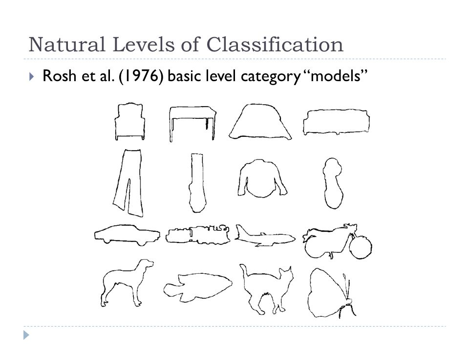 Tanaka and Taylor (1991)  Expertise guides classification  What is this.