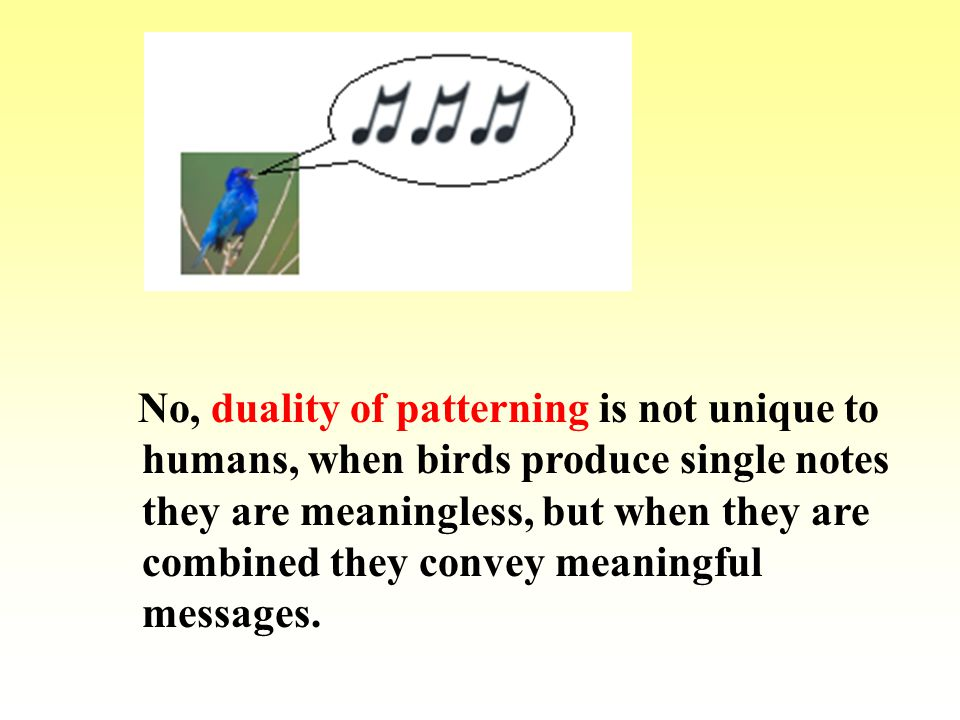 Learnability – ability to learn different number of human languages Can we teach a human language to animals.