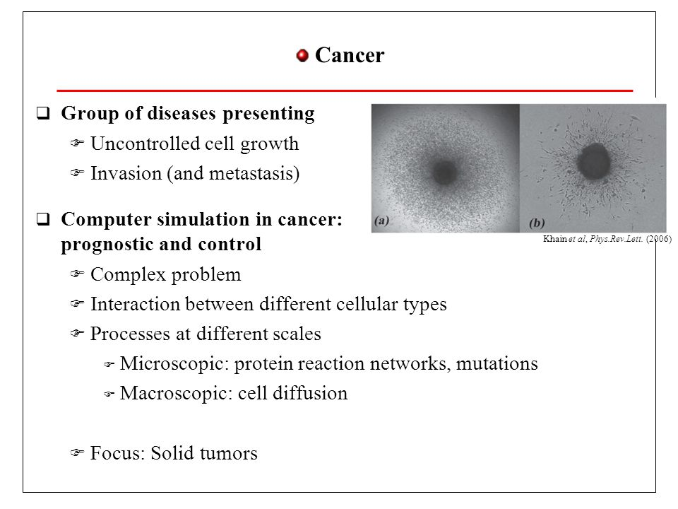Tumor growth  Phase 1: Genetic mutations  Cellular cycle and apoptosis disruption  Uncontrolled reproduction, no cell death  Phase 2: Interaction with immune system  Cancer cells inhibit immune system  Phase 3: Solid tumor  Cancer cell diffusion  Necrotic zones  Solid tumor diameter 1-2 mm Necrotic zone Uncontrolled Reproduction Healthy cells