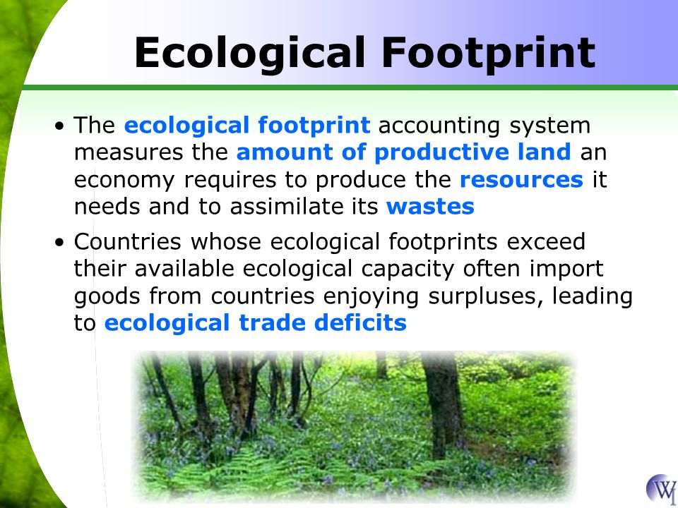 Ecological Footprint per Person in Selected Nations, 1999 Hectares United Arab Emirates United States Netherlands Japan China Source: Redefining Progress 10.1 1.3 9.7 5.3 4.8 0.8 4.8 0.7 1.5 1.0 Available capacity Ecological footprint