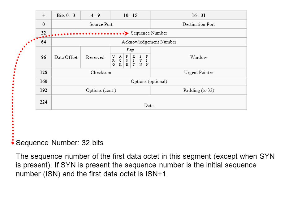 Sequence Number: 32 bits (cont.) A fundamental notion in the design is that every octet of data sent over a TCP connection has a sequence number.