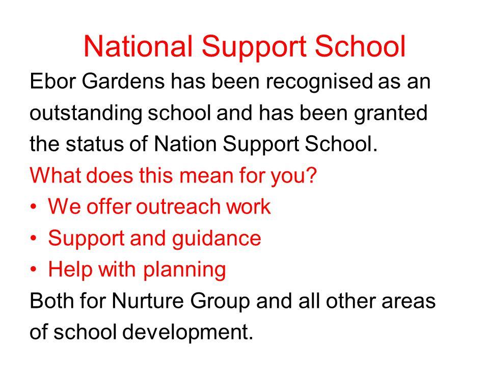 What is a Nurture Group child.