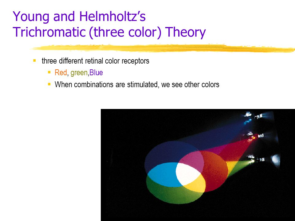 Young and Helmholtz's Trichromatic (three color) Theory  three different retinal color receptors  Red, green,Blue  When combinations are stimulated, we see other colors