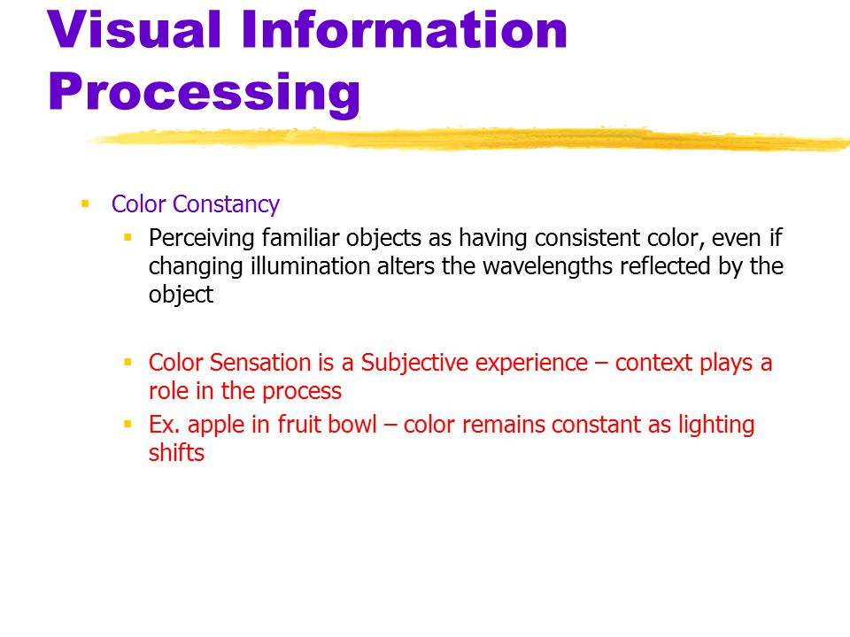 Visual Information Processing  Color Constancy  Perceiving familiar objects as having consistent color, even if changing illumination alters the wavelengths reflected by the object  Color Sensation is a Subjective experience – context plays a role in the process  Ex.