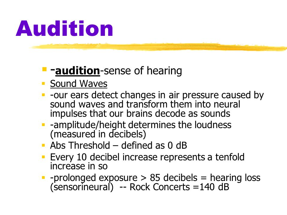 Audition  - audition-sense of hearing  Sound Waves  -our ears detect changes in air pressure caused by sound waves and transform them into neural impulses that our brains decode as sounds  -amplitude/height determines the loudness (measured in decibels)  Abs Threshold – defined as 0 dB  Every 10 decibel increase represents a tenfold increase in so  -prolonged exposure > 85 decibels = hearing loss (sensorineural) -- Rock Concerts =140 dB