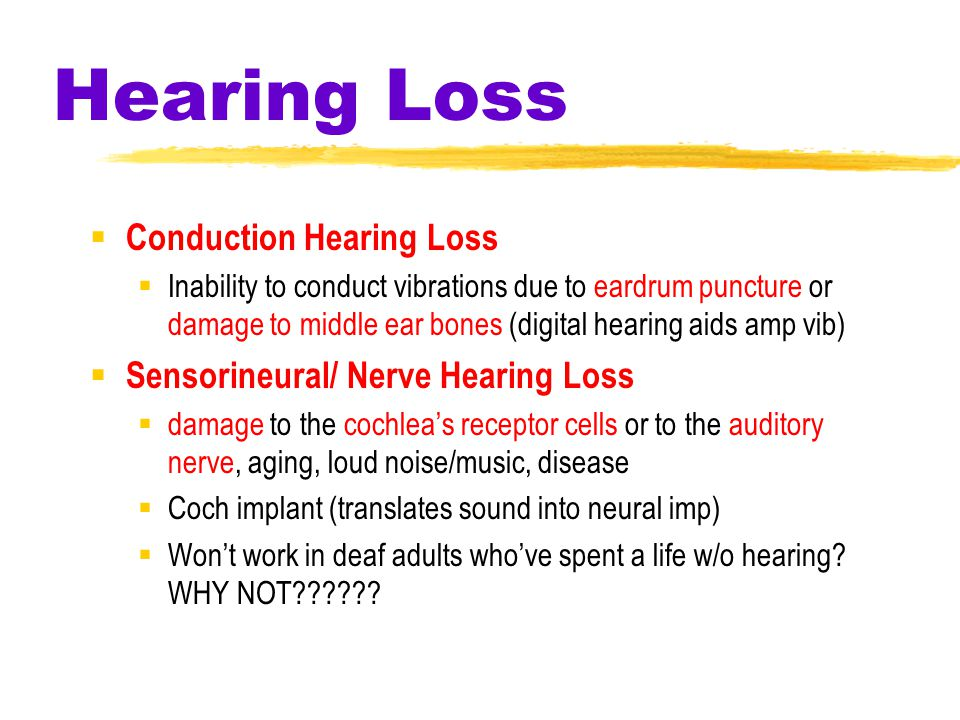 Hearing Loss  Conduction Hearing Loss  Inability to conduct vibrations due to eardrum puncture or damage to middle ear bones (digital hearing aids amp vib)  Sensorineural/ Nerve Hearing Loss  damage to the cochlea's receptor cells or to the auditory nerve, aging, loud noise/music, disease  Coch implant (translates sound into neural imp)  Won't work in deaf adults who've spent a life w/o hearing.