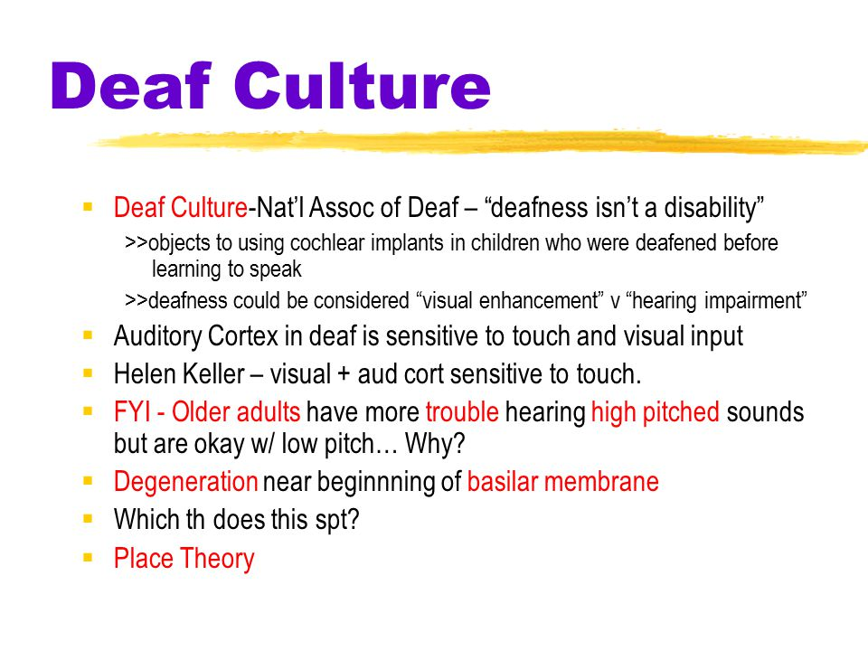 Deaf Culture  Deaf Culture-Nat'l Assoc of Deaf – deafness isn't a disability >>objects to using cochlear implants in children who were deafened before learning to speak >>deafness could be considered visual enhancement v hearing impairment  Auditory Cortex in deaf is sensitive to touch and visual input  Helen Keller – visual + aud cort sensitive to touch.
