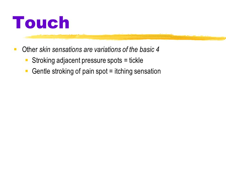 Touch  Other skin sensations are variations of the basic 4  Stroking adjacent pressure spots = tickle  Gentle stroking of pain spot = itching sensation