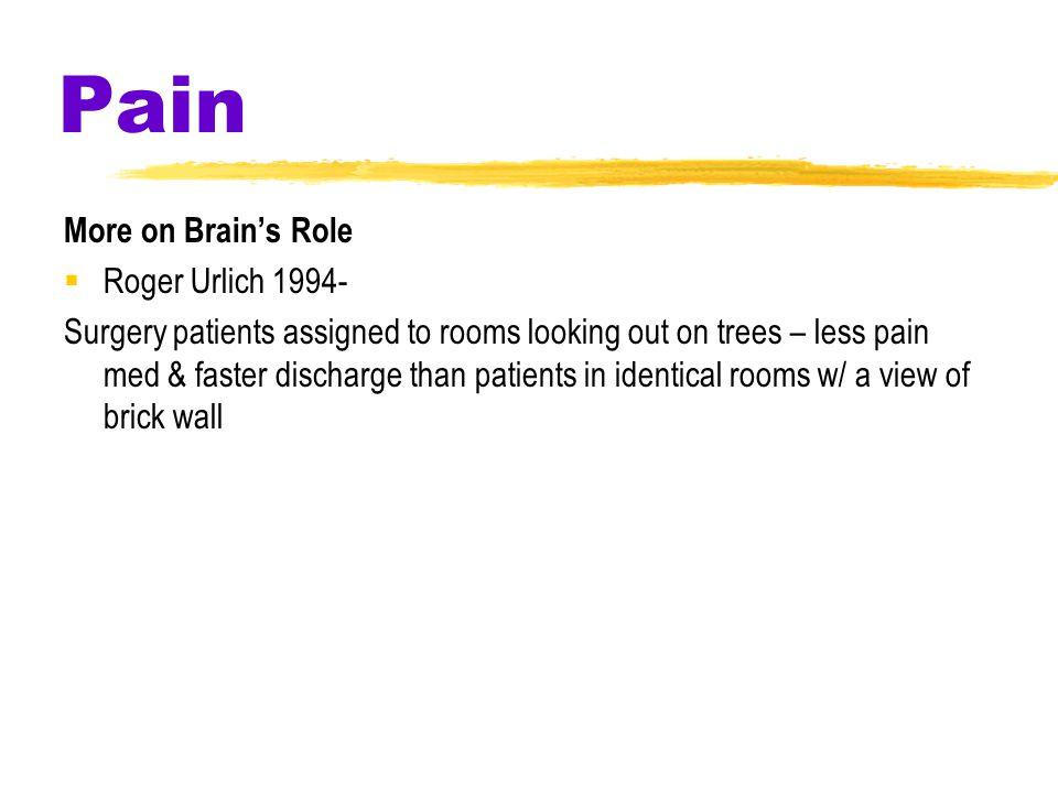Pain More on Brain's Role  Roger Urlich 1994- Surgery patients assigned to rooms looking out on trees – less pain med & faster discharge than patients in identical rooms w/ a view of brick wall