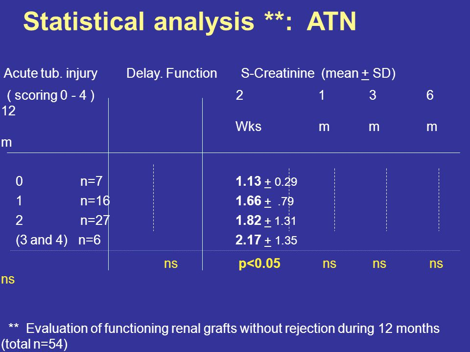 Baseline Renal Allograft Biopsies Purpose: c) Prediction of function / management Arterial intimal sclerosis: - associated with increased S-Cr 3 and 6 months post tx - associated with donor age ATN: - associated with increased S-Cr 2 weeks post tx