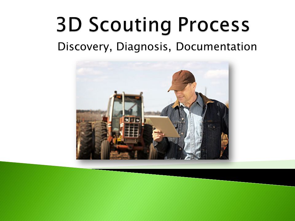  AIMQ 2.0 Pilot Programs ◦ USDA Top 10 and Top 100 Retailers ◦ Large North American Distributors ◦ Larry Fiene – Business Manager for Winfield  Operators are using the 3D Analysis Scouting Procedure ◦ Discovery ◦ Diagnosis ◦ Documentation