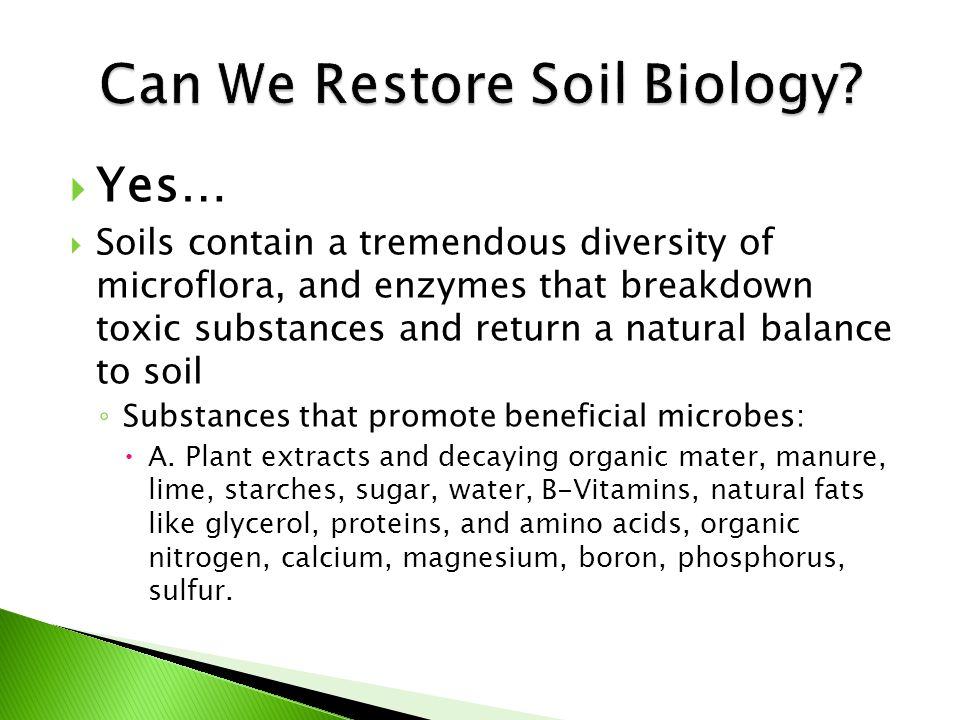  Supply substances that offset the antagonism of fertilizers, and crop protection products giving the Beneficial s a chance to re- establish in the rhizosphere.