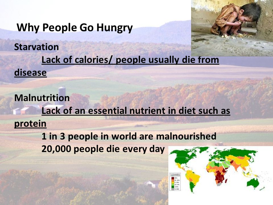 Why People Go Hungry.There is enough food for everyone in the world but what is the problem.