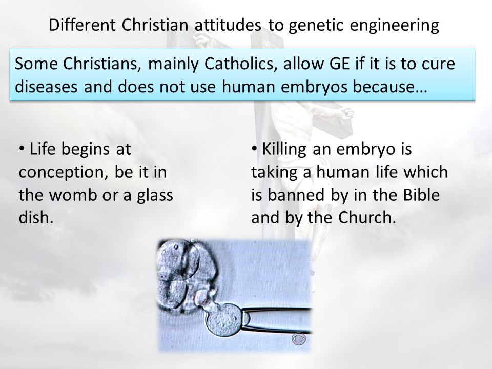 Different Christian attitudes to genetic engineering Some Christians are opposed to any forms of genetic research at all.