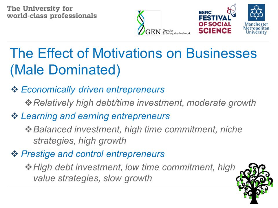 The Effect of Motivations on Businesses (Female and Male)  Reluctant (young) entrepreneurs  Low investment, low value strategies, slow/no growth