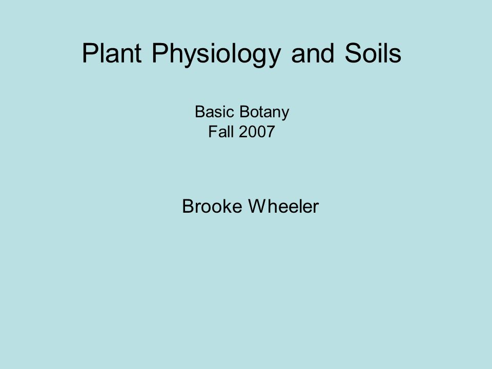 Saturday September 22 Reading quiz Plant physiology Short break (talk with project group) Soils- play with dirt Transpiration lab