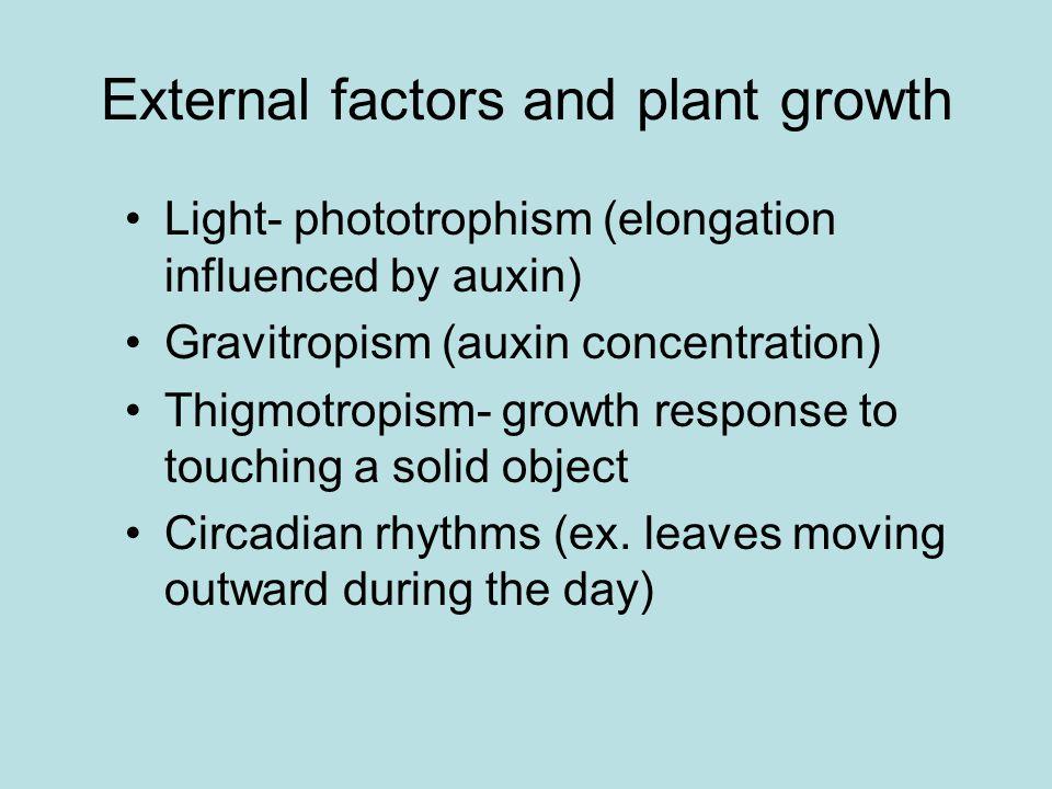 Plant Hormones Chemical signals Regulators –Stimulate –Inhibit