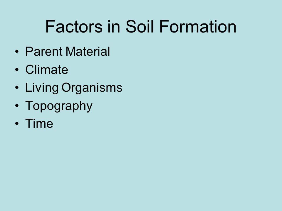Mountain soil: Shallow, young soil