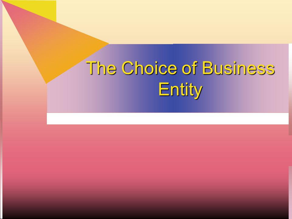 Choice of Entity  This is a tax planning chapter - HOW to use rules  Pass-through losses  After-tax cash flows to individual investor.