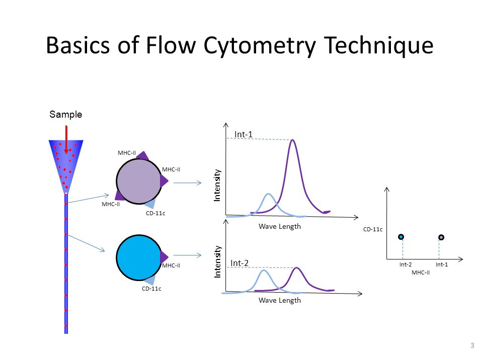 Cell Population Identification in Flow Cytometry (FCM) X% Adapted from the Science Creative Quarterly (2) Parameter 3 Parameter 4 Parameter 2 Parameter 1