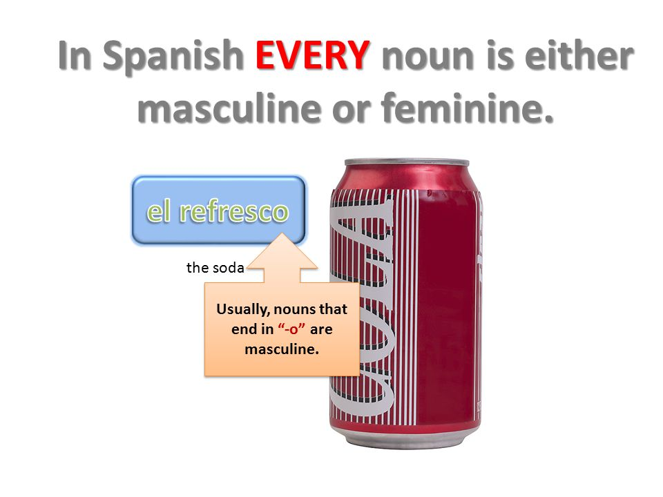 In Spanish EVERY noun is either masculine or feminine.