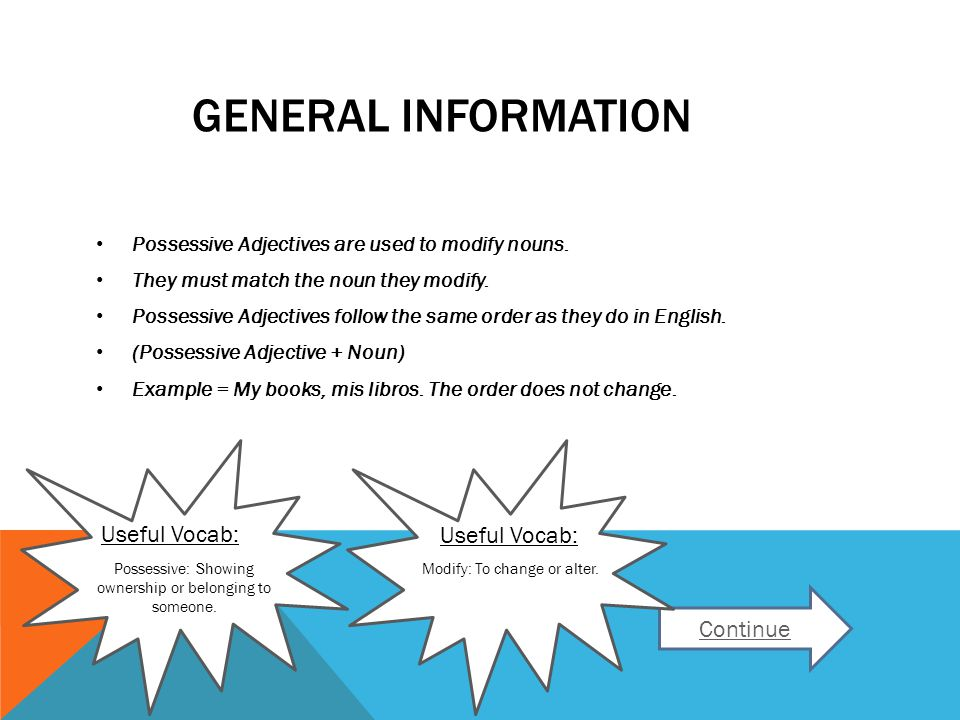 GENERAL INFORMATION Possessive Adjectives are used to modify nouns.
