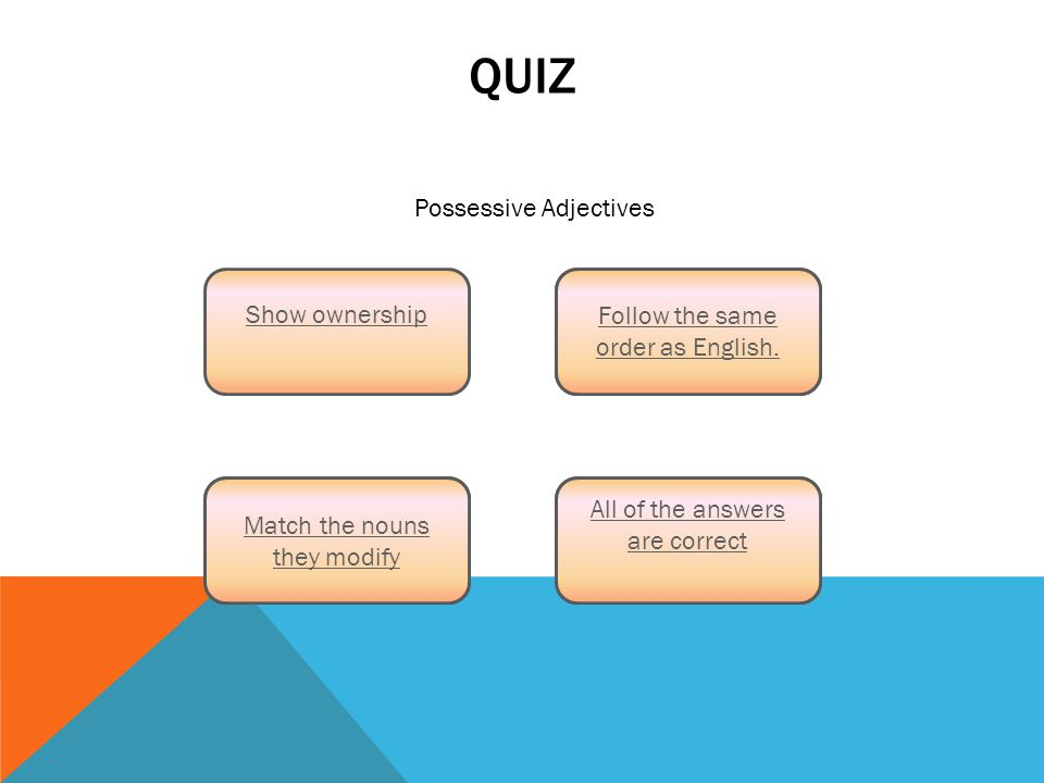 QUIZ Match the nouns they modify Show ownership All of the answers are correct Follow the same order as English.