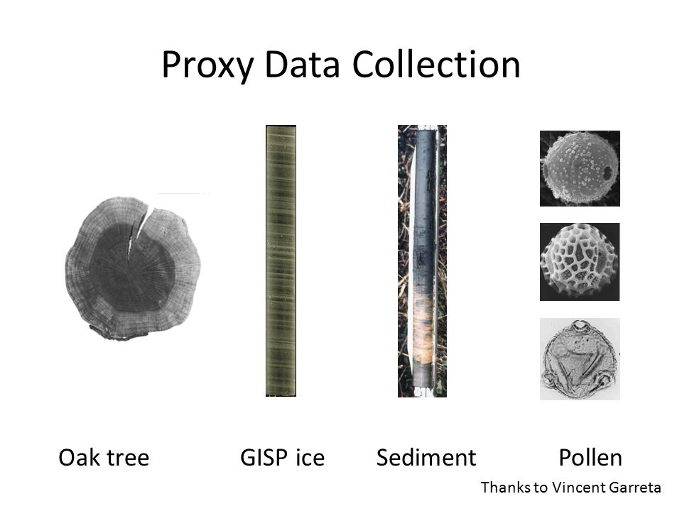 core samples mult. counts by taxa Pollen