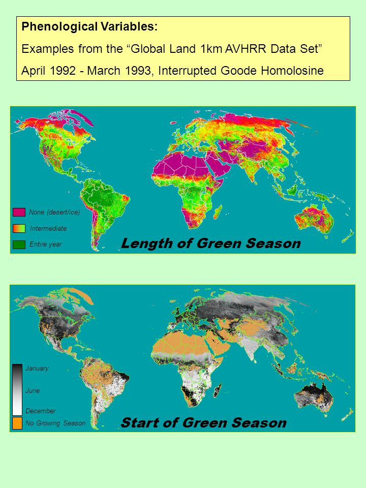 Phenological Variables: Examples from the Global Land 1km AVHRR Data Set April 1992 - March 1993, Interrupted Goode Homolosine <0.1 <0.25 >0.5 <0.5 > 0.55 < 0.17 < 0.35 < 0.45 < 0.55 mean range Simple Biome Classification Bivariate Level Slice: - Annual Mean NDVI - Annual NDVI Range <0.1 <0.25 >0.5 <0.5 > 0.55 < 0.17 < 0.35 < 0.45 < 0.55 mean range