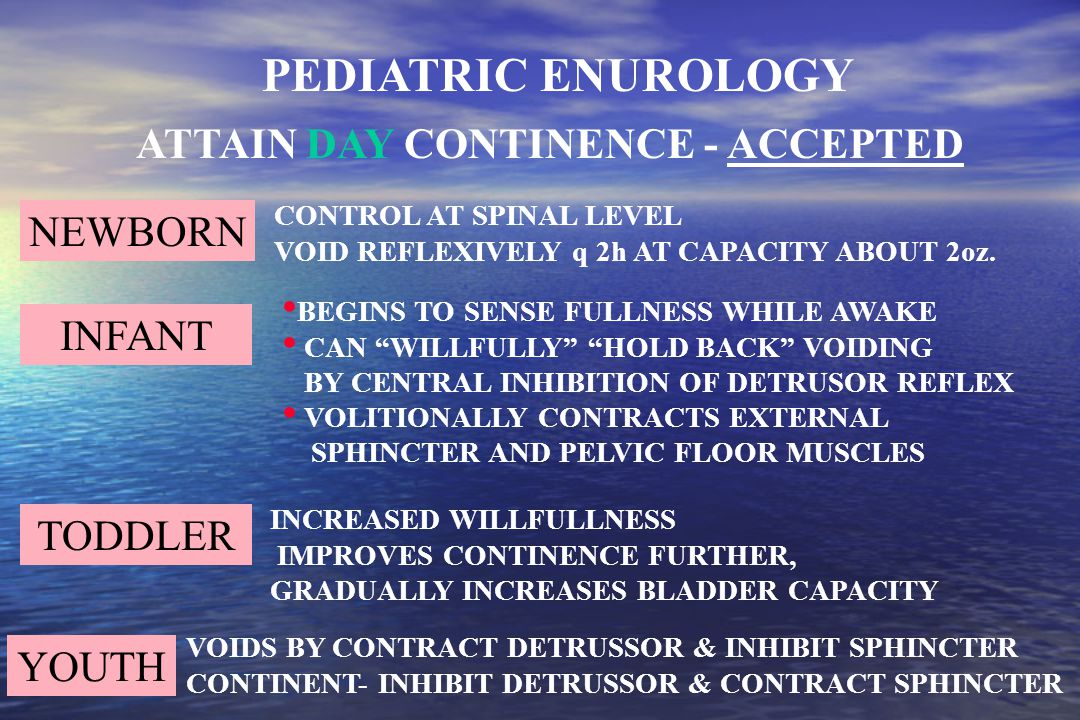 ATTAIN NIGHT CONTINENCE - UNKNOWN SENSE THEN: INHIBIT DETRUSOR CONTRACTION CONTRACT PELVIC FLOOR MUSCLES NOCTURNAL OLIGURIA INCREASED NOCTURNAL PRODUCTION OF VASOPRESSIN PEDIATRIC ENUROLOGY