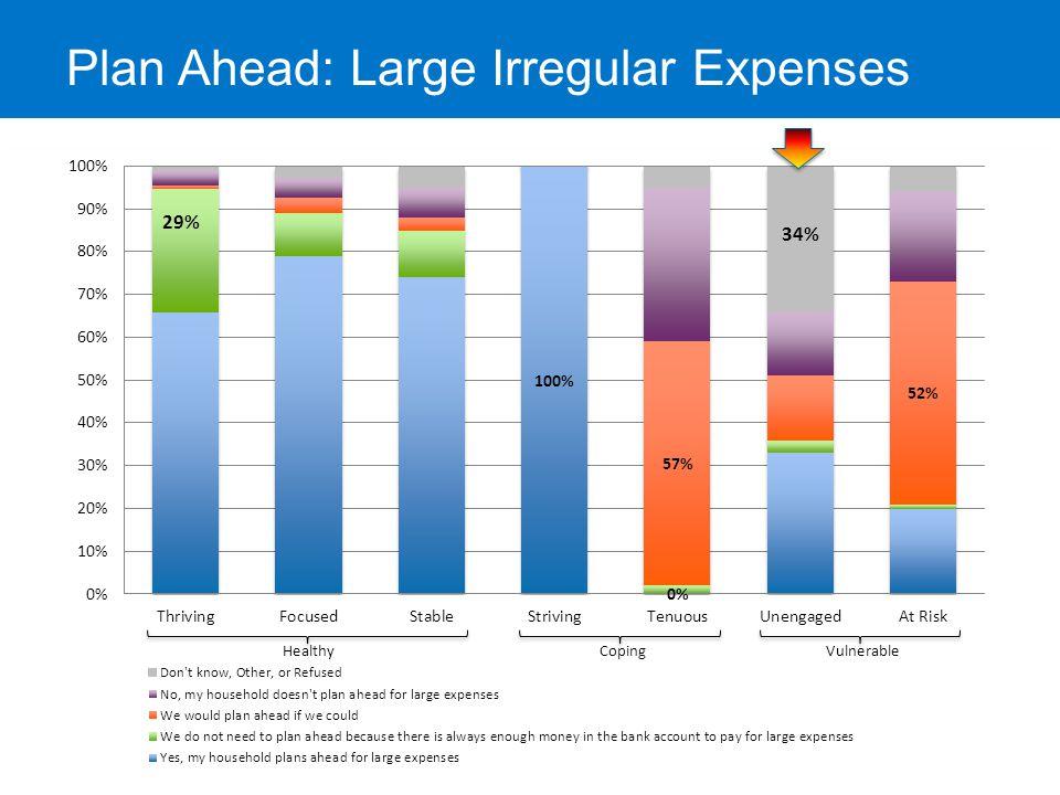 Budget or Spending Plan