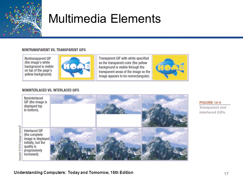 Multimedia Elements – PNG Portable Network Graphics Format designed specifically for use with Web page images in 1996 Uses lossless compression Can compress more efficiently than GIF Can use specific color palette of 256 colors or true color palette of 16 million colors Can also be transparent and interlaced Understanding Computers: Today and Tomorrow, 15th Edition 18