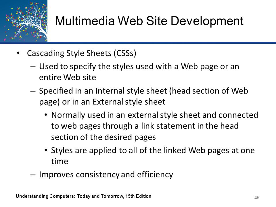 Multimedia Web Site Development Wireless Markup Language (WML) – Used to create Web pages to be displayed on WAP- enabled wireless devices, such some older mobile phones Scripting Languages – Used with Web pages with lots of dynamic content Allows the inclusion of scripts (instructions) in the Web page code JavaScript, VBScript, Perl Understanding Computers: Today and Tomorrow, 15th Edition 47