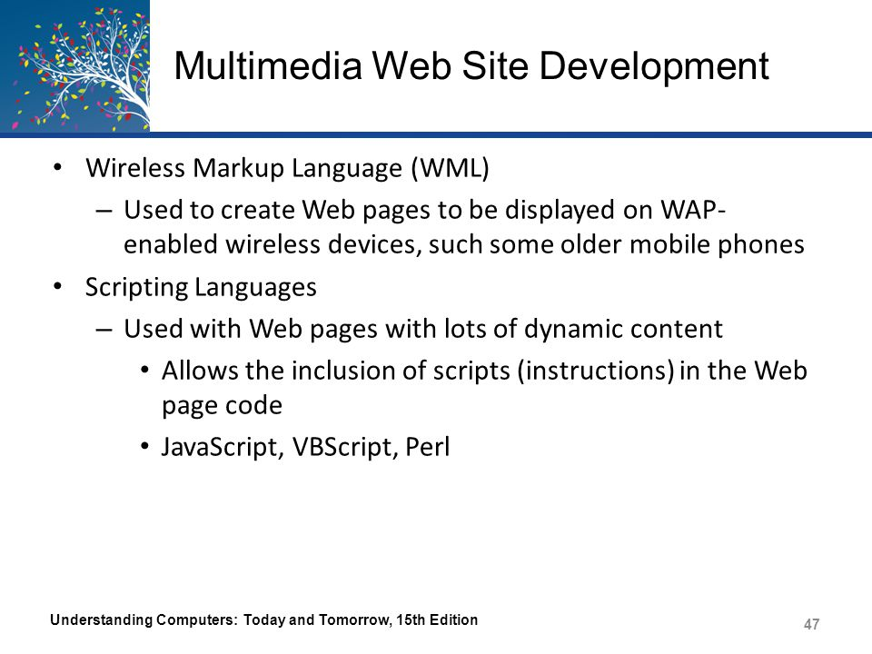 Multimedia Web Site Development AJAX – Creates faster, more efficient interactive Web applications – Only requests new data from the server, not the entire Web page, when the page is updated – Interactive Web pages built with AJAX run faster – Normally require less bandwidth than conventional Web applications Understanding Computers: Today and Tomorrow, 15th Edition 48