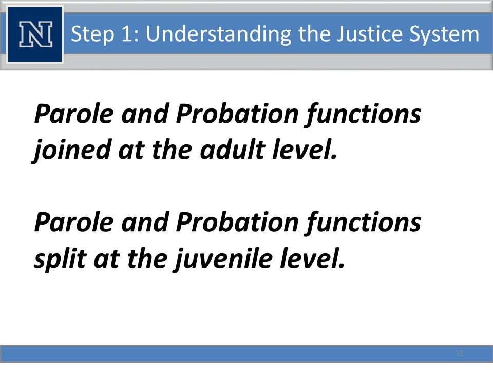Step 1: Understanding the Justice System Juvenile Issues Parole and Probation functions split at the juvenile level.