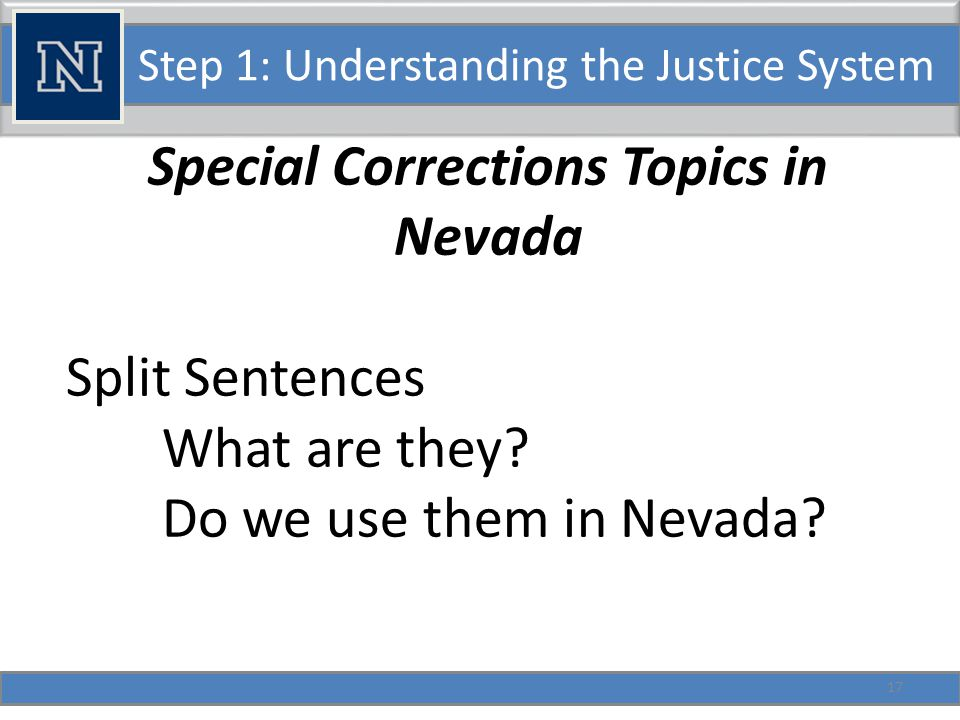 Step 1: Understanding the Justice System Special Corrections Topics in Nevada Diversion.