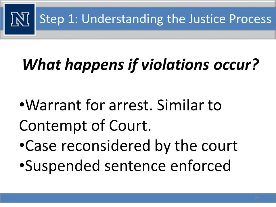 Step 1: Understanding the Justice Process What happens if diversion is not an option.